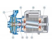 Насос центробежный c двумя рабочими колёсами Pedrollo 2CPm 25-140m