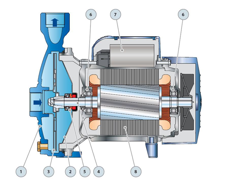 Устройство центробежного насоса pedrollo CPm