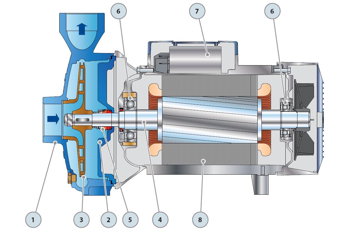 Устройство центробежных насосов Pedrollo CP 220-250